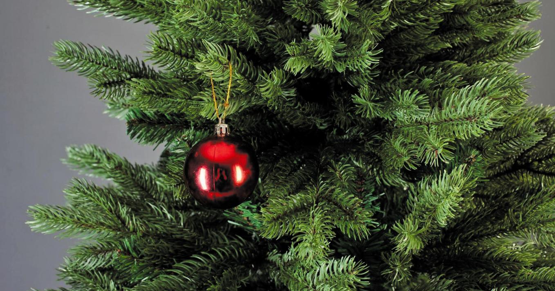 Куда поставить елку в декабре 2019 года?